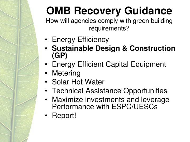 OMB Recovery Guidance