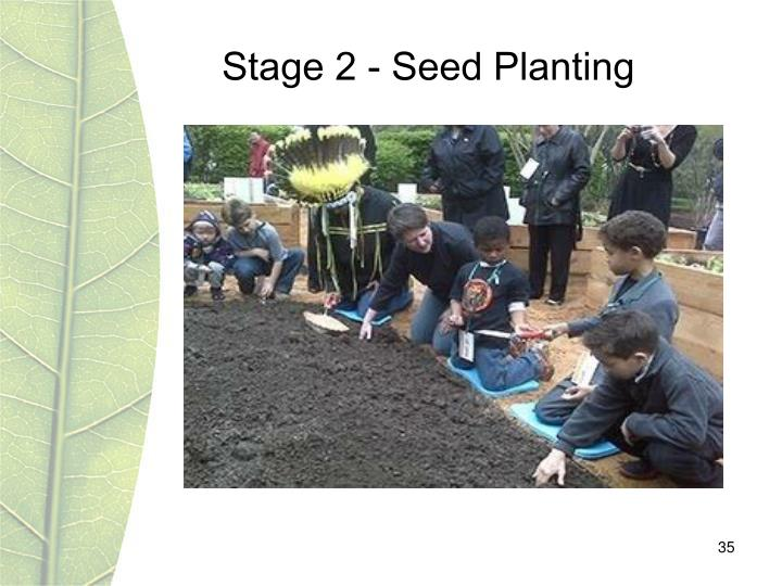 Stage 2 - Seed Planting