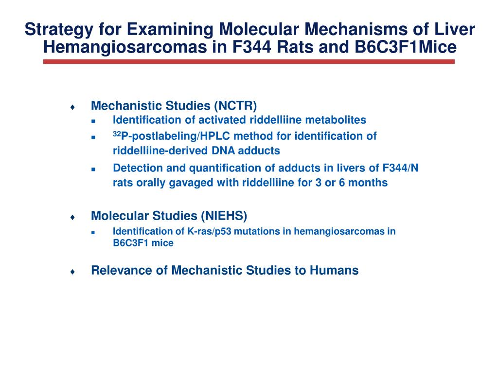 Strategy for Examining Molecular Mechanisms of Liver Hemangiosarcomas in F344 Rats and B6C3F1Mice