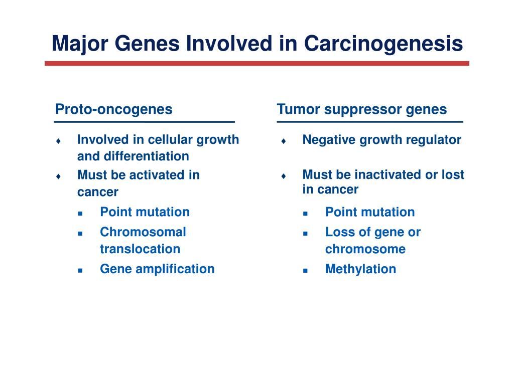 Major Genes Involved in Carcinogenesis