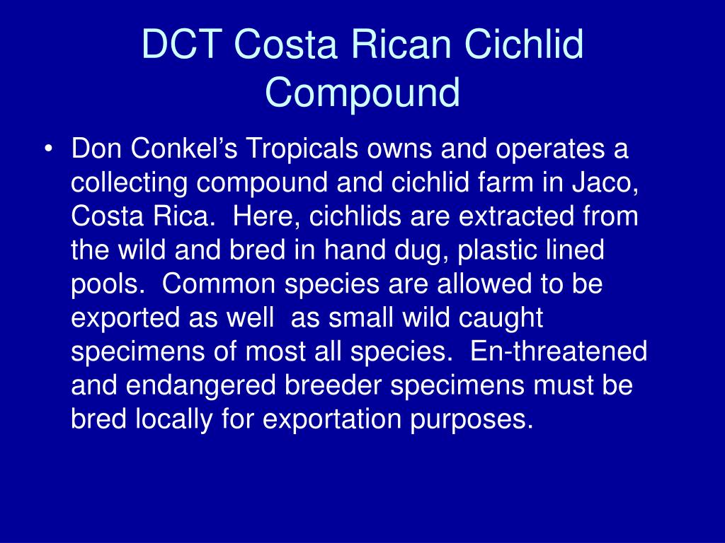 DCT Costa Rican Cichlid Compound