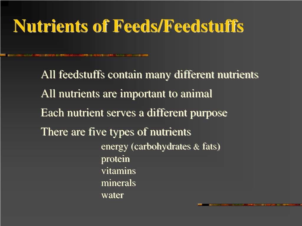 Nutrients of Feeds/Feedstuffs