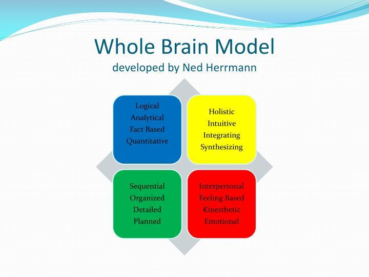 Whole Brain Model
