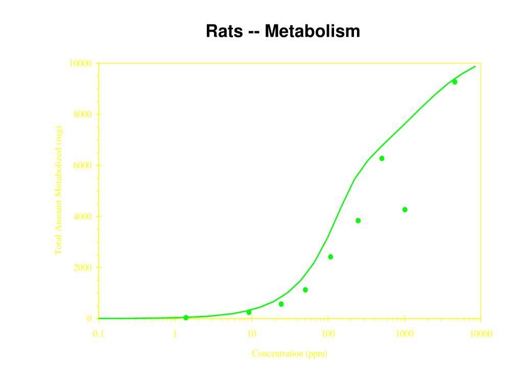 Rats -- Metabolism