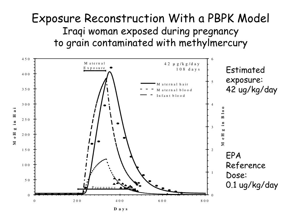 Exposure Reconstruction With a PBPK Model