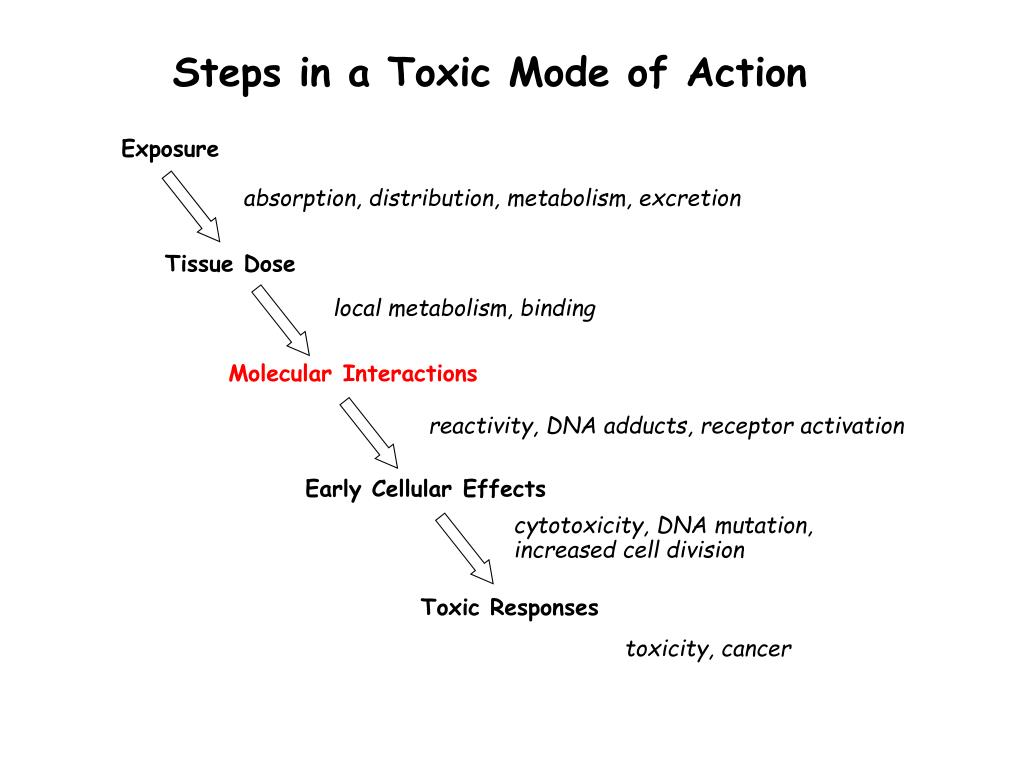 Steps in a Toxic Mode of Action