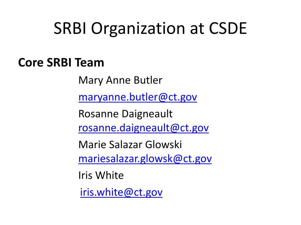 SRBI Organization at CSDE