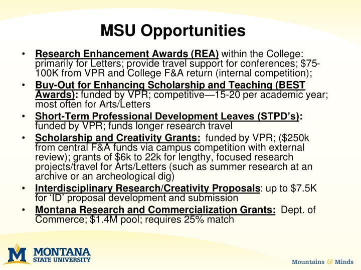 MSU Opportunities