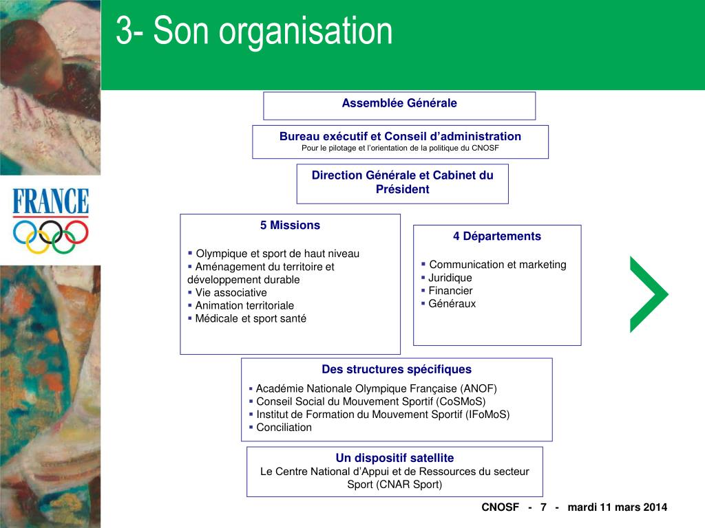 3- Son organisation