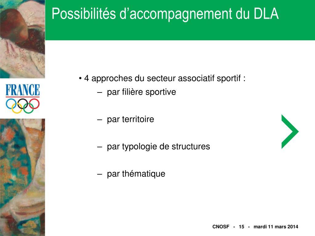Possibilités d'accompagnement du DLA
