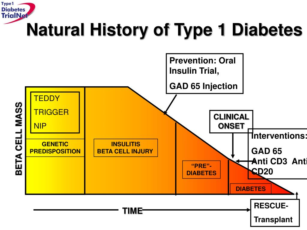 Natural History of Type 1 Diabetes