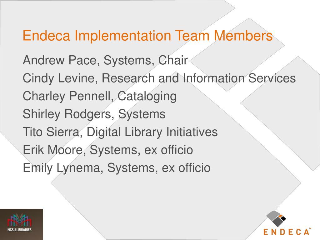 Endeca Implementation Team Members