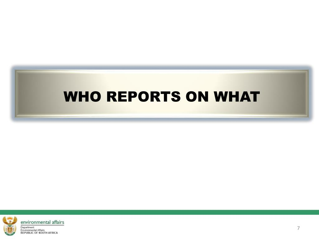 WHO REPORTS ON WHAT
