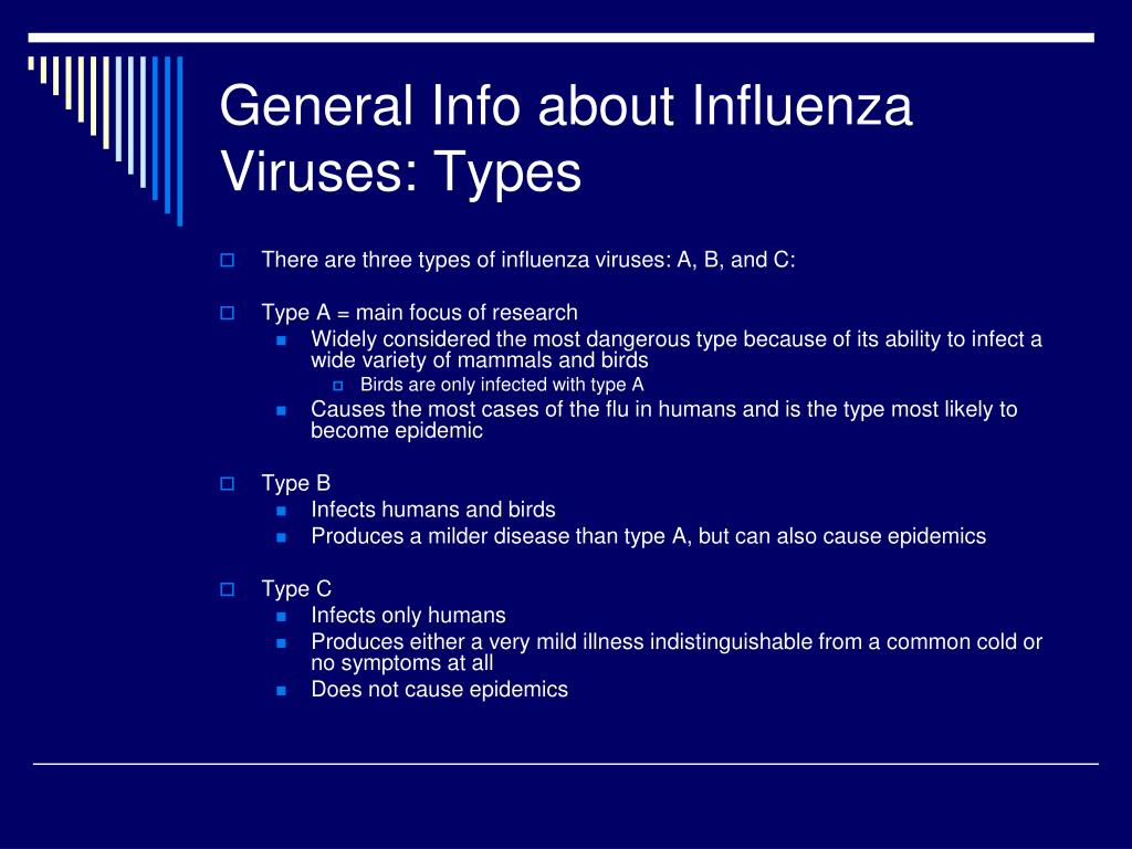 General Info about Influenza Viruses: Types