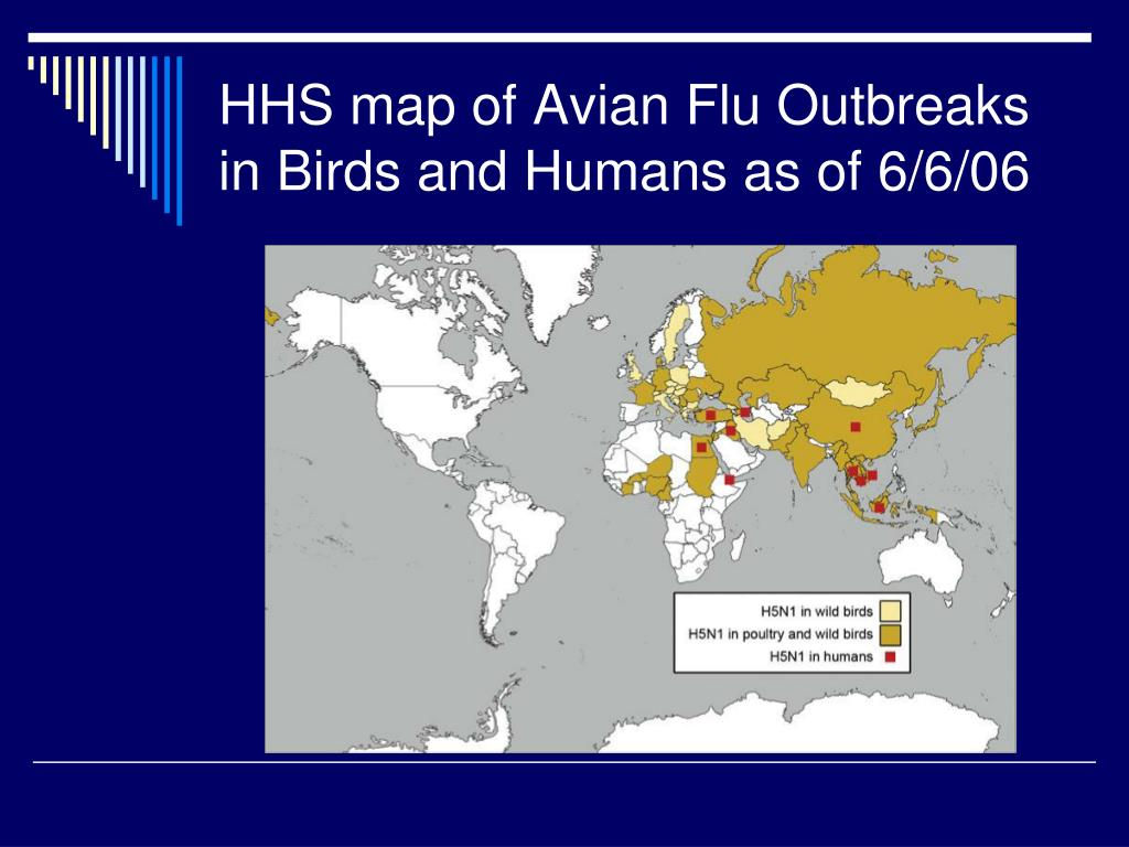 HHS map of Avian Flu Outbreaks in Birds and Humans as of 6/6/06