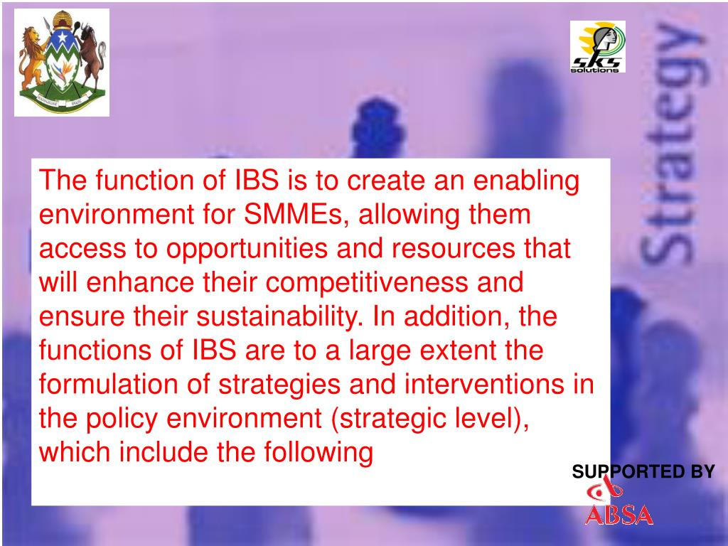 The function of IBS is to create an enabling environment for SMMEs, allowing them access to opportunities and resources that will enhance their competitiveness and ensure their sustainability. In addition, the functions of IBS are to a large extent the formulation of strategies and interventions in the policy environment (strategic level), which include the following