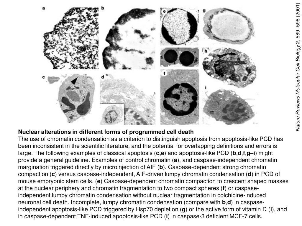 Nature Reviews Molecular Cell Biology