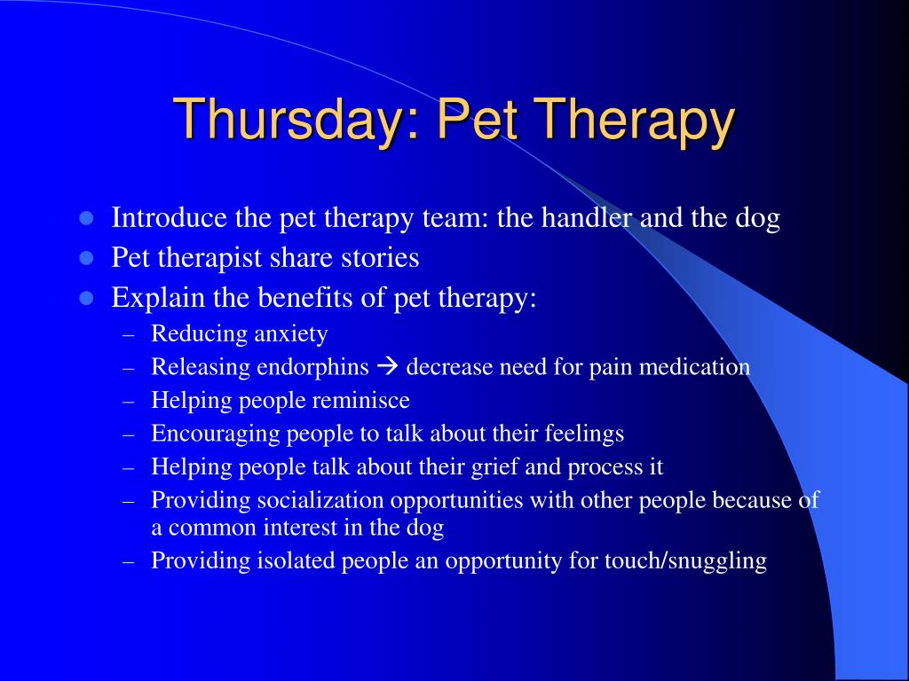 Thursday: Pet Therapy