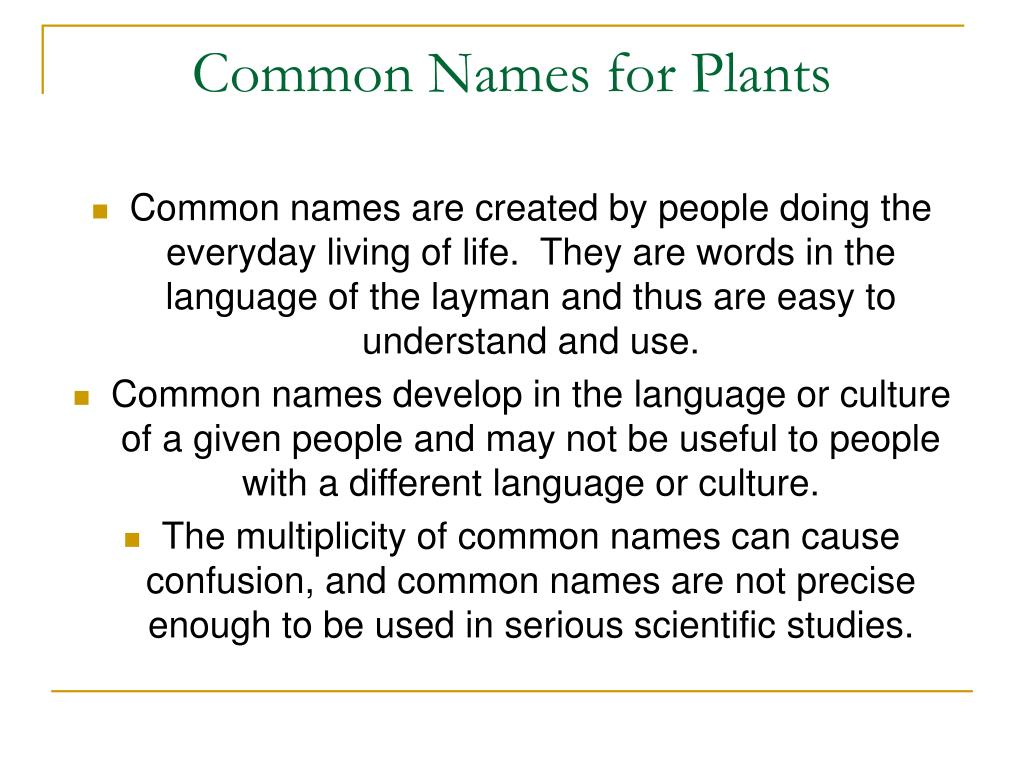 Common Names for Plants