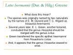 lotus heermannii dur hilg greene