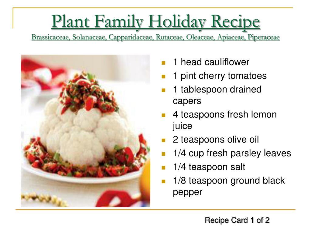 Plant Family Holiday Recipe