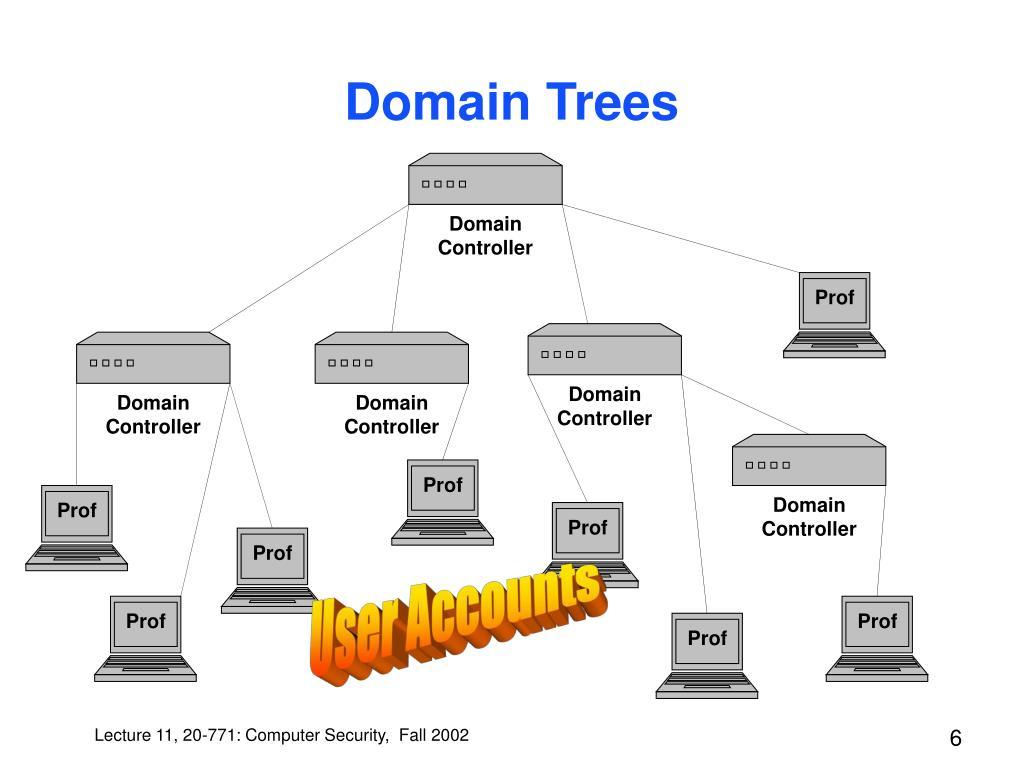 Domain Trees