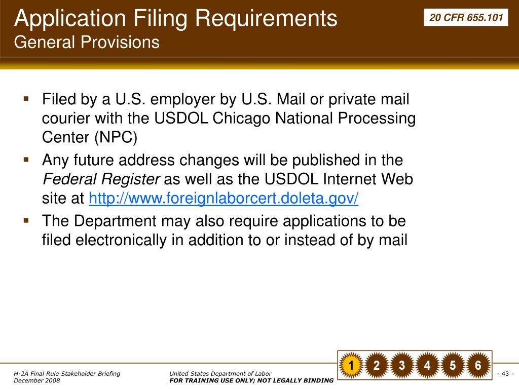 Application Filing Requirements