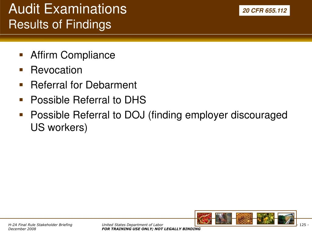 Audit Examinations