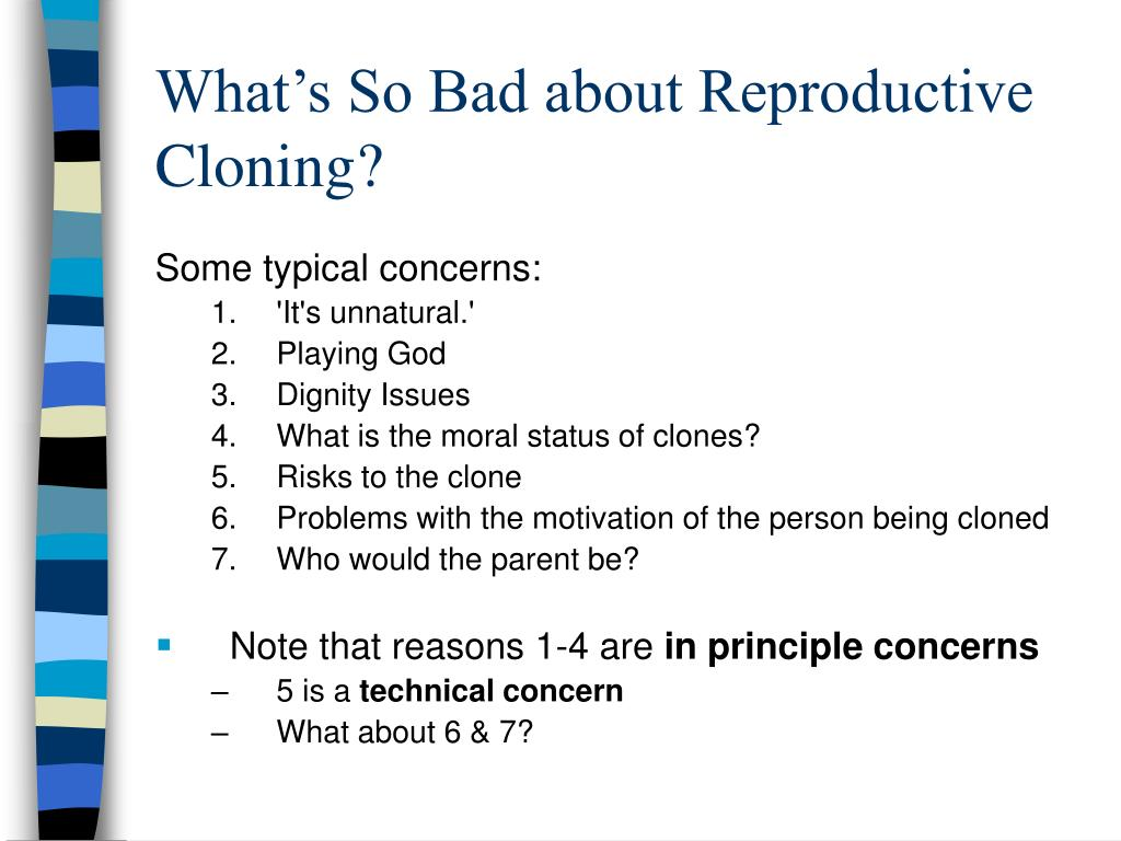 What's So Bad about Reproductive Cloning?