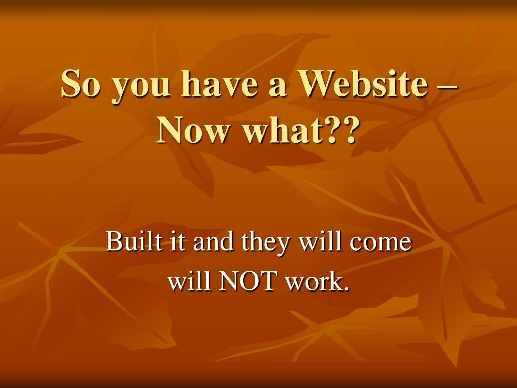 So you have a Website – Now what??