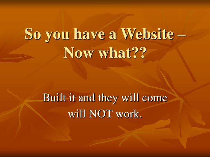 So you have a website now what