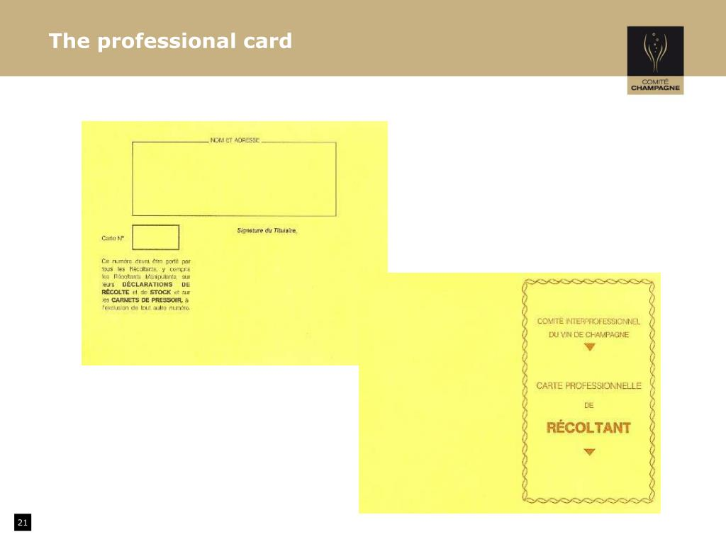 The professional card