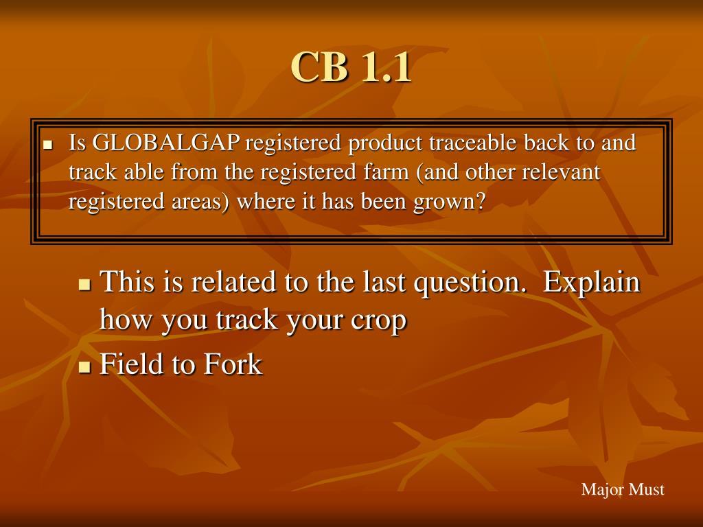 CB 1.1
