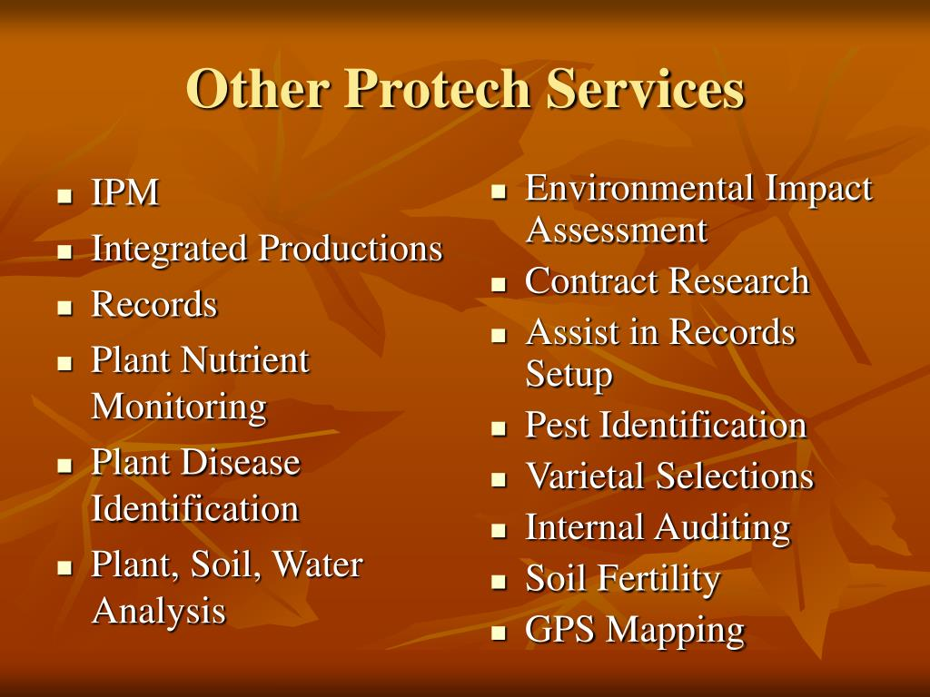 Other Protech Services
