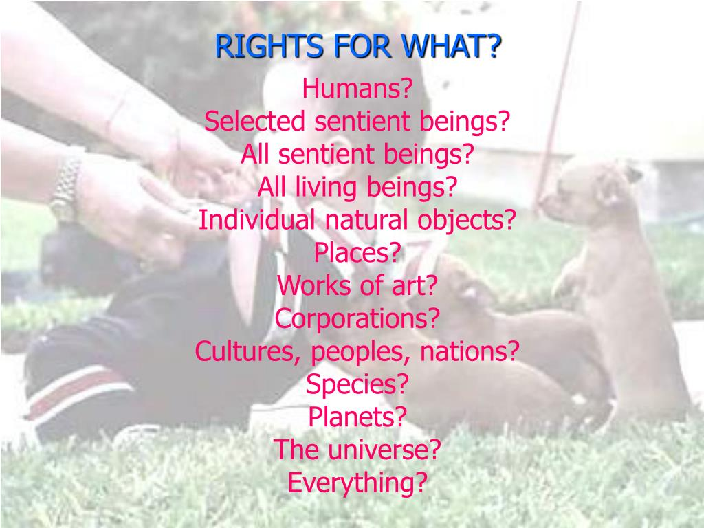 RIGHTS FOR WHAT?