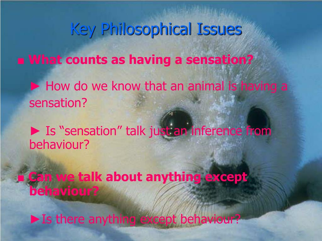 Key Philosophical Issues