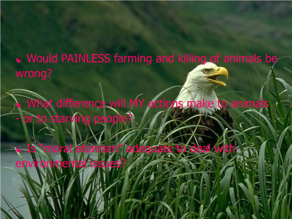 Would PAINLESS farming and killing of animals be