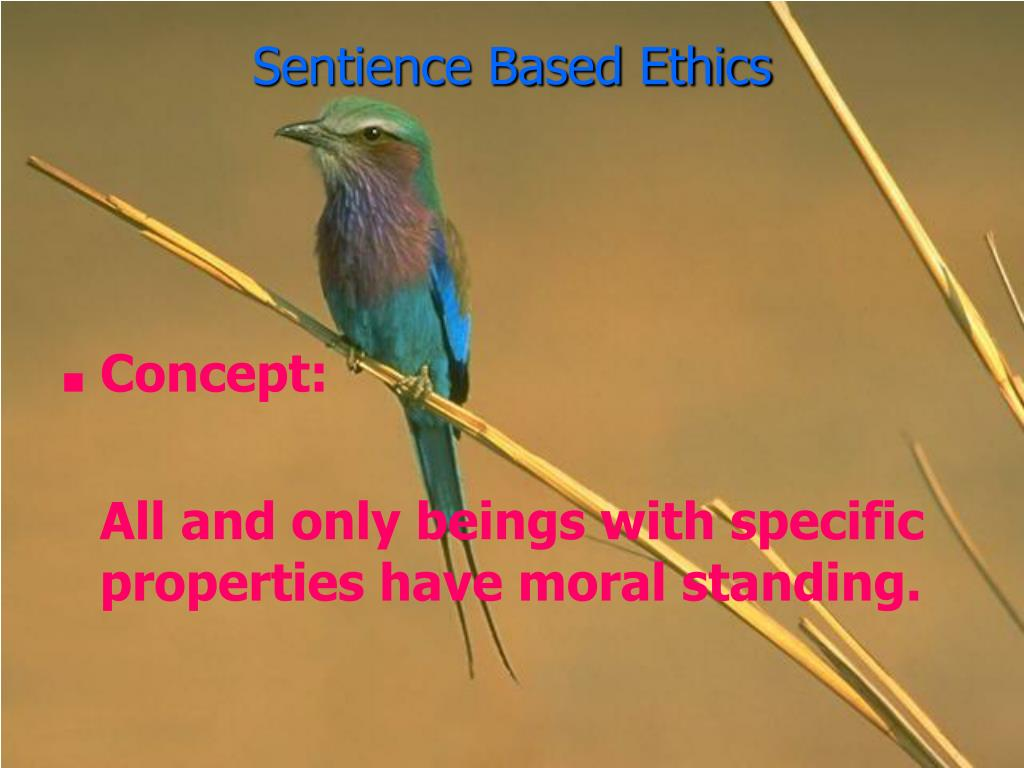 Sentience Based Ethics