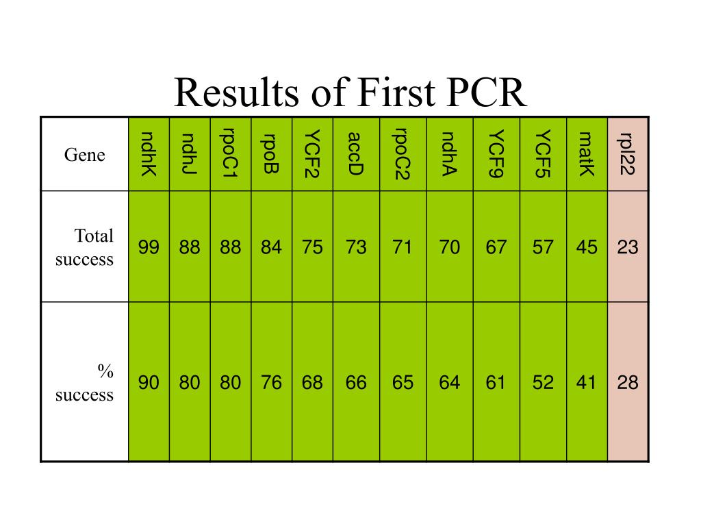 Results of First PCR