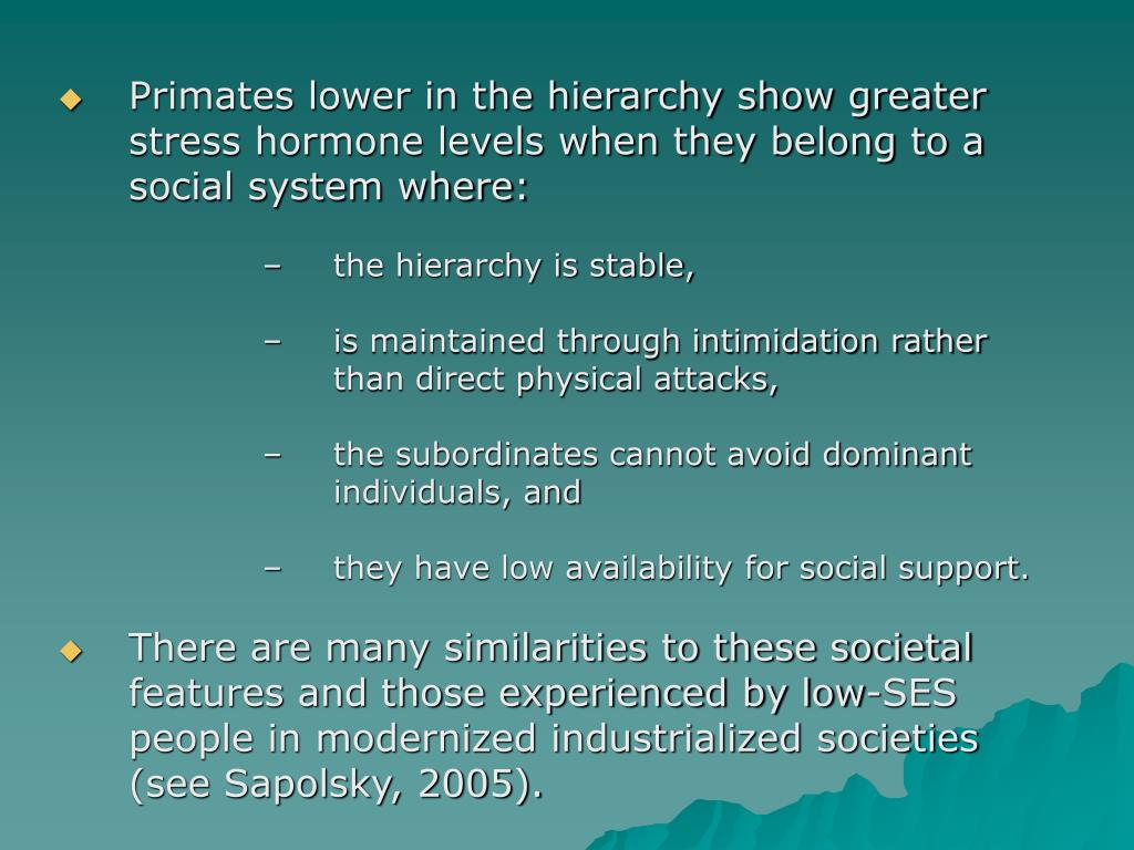 Primates lower in the hierarchy show greater stress hormone levels when they belong to a social system where: