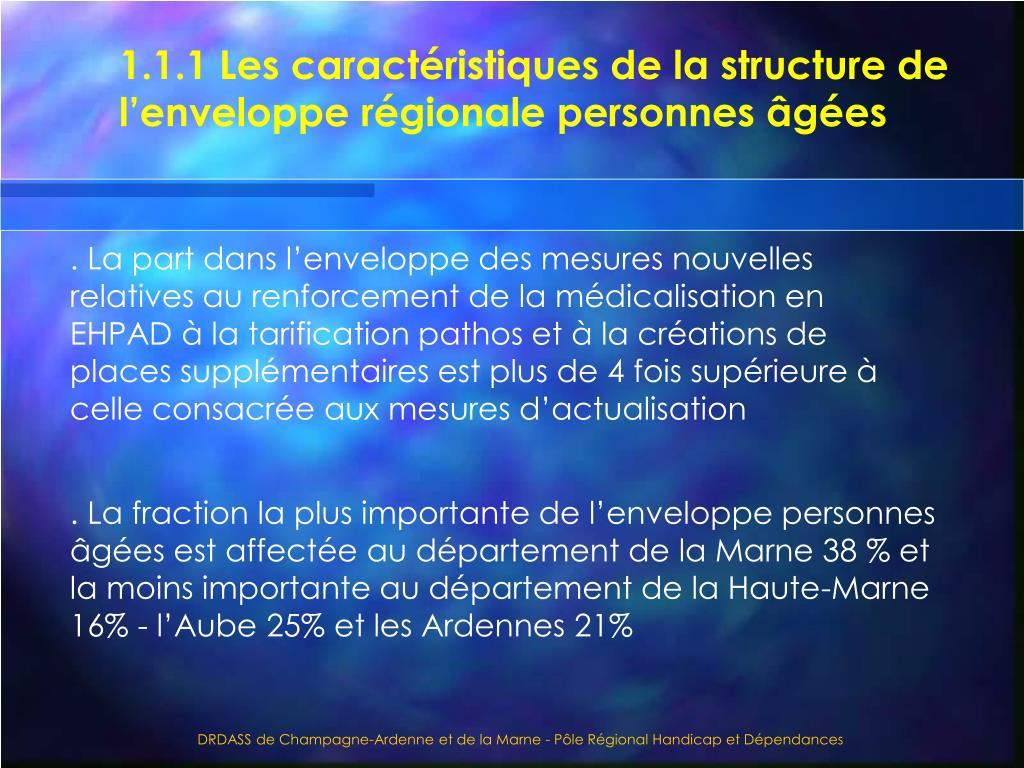 1.1.1 Les caractéristiques de la structure de l'enveloppe régionale personnes âgées