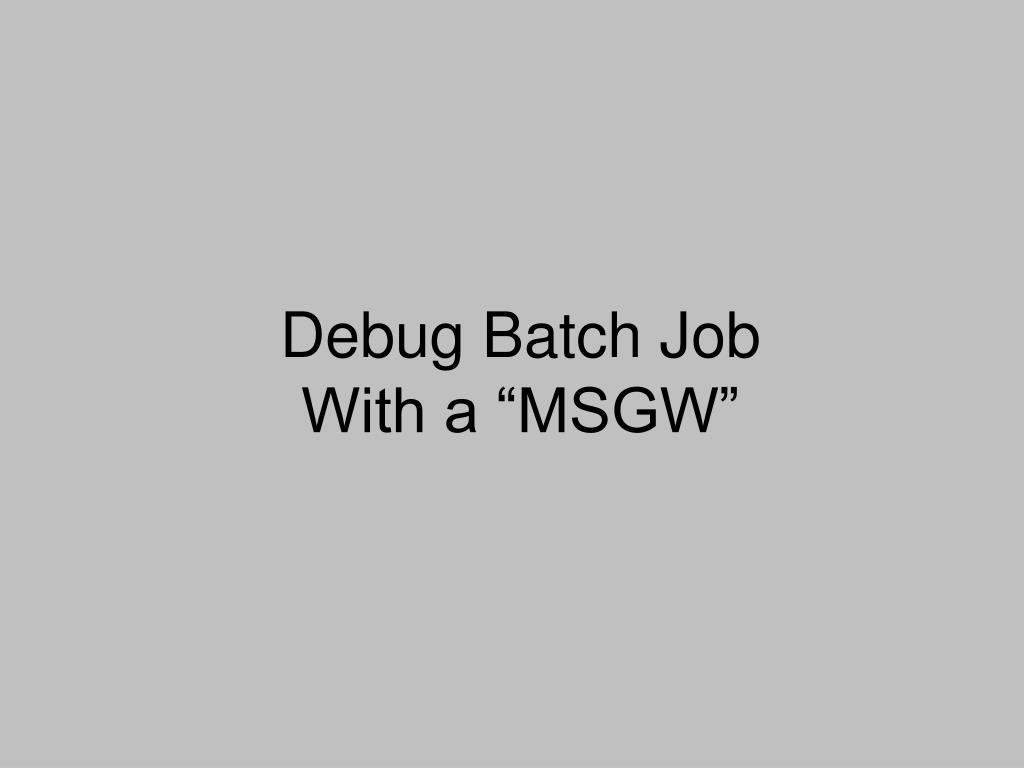 Debug Batch Job