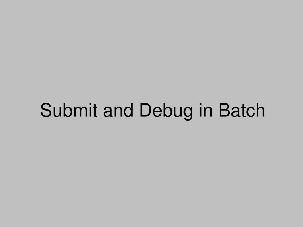 Submit and Debug in Batch