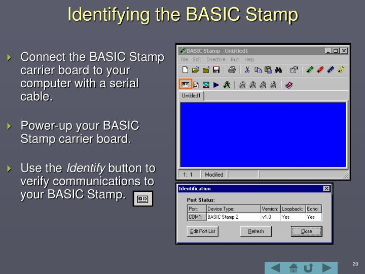 Identifying the BASIC Stamp