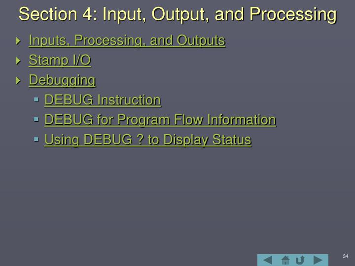 Section 4: Input, Output, and Processing