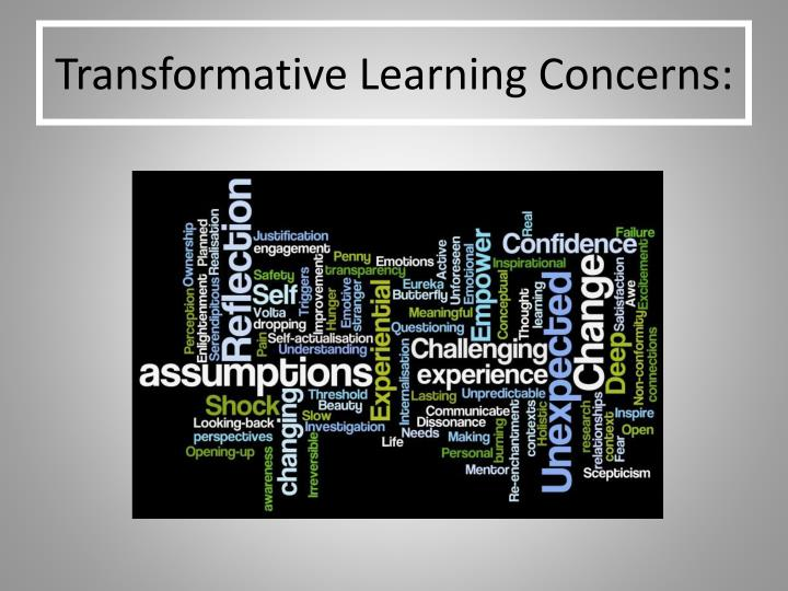 Transformative learning concerns