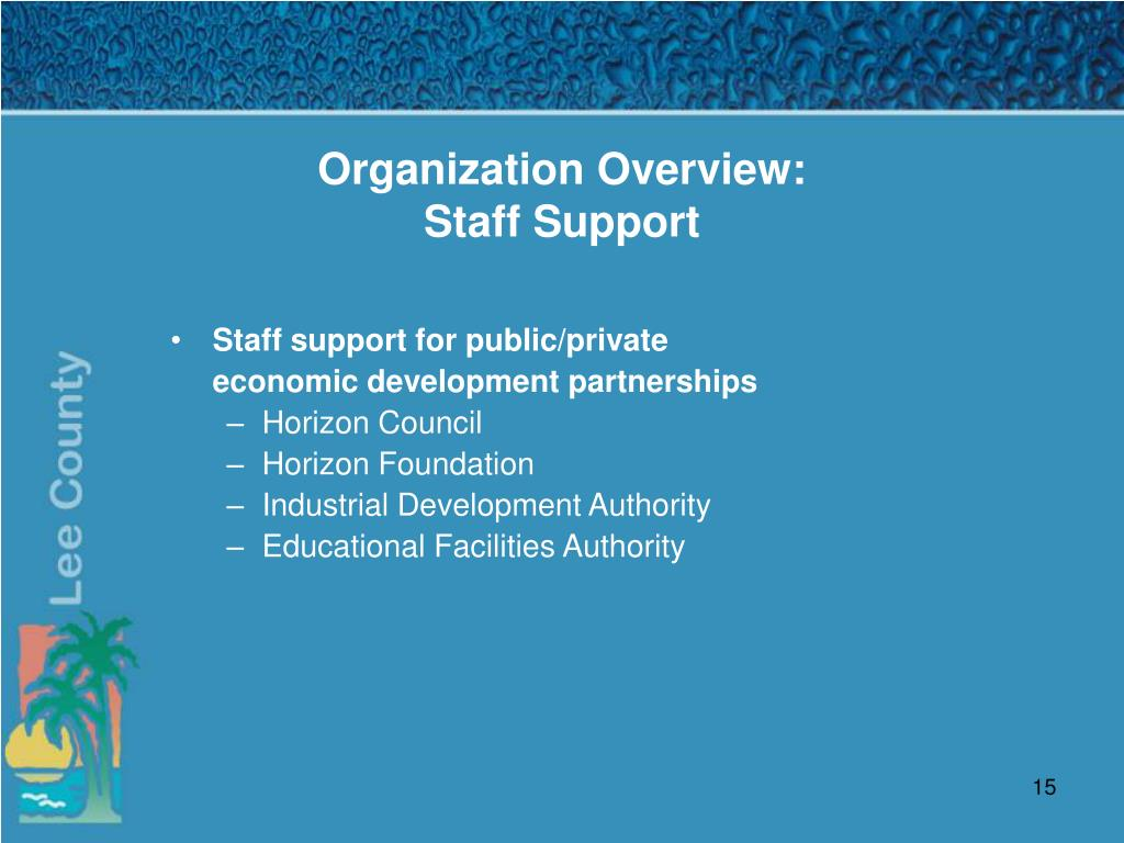 Organization Overview: