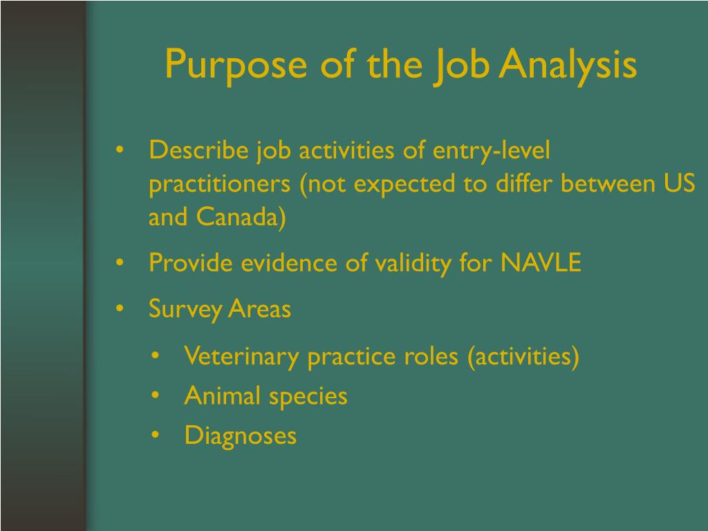 Purpose of the Job Analysis