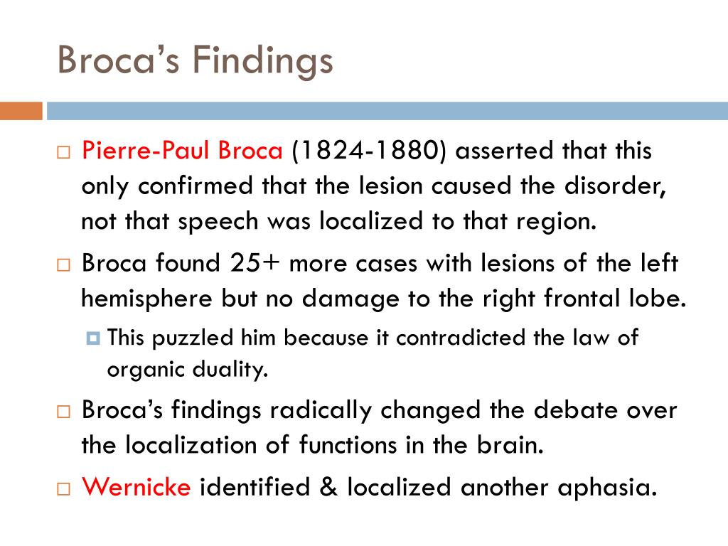 Broca's Findings