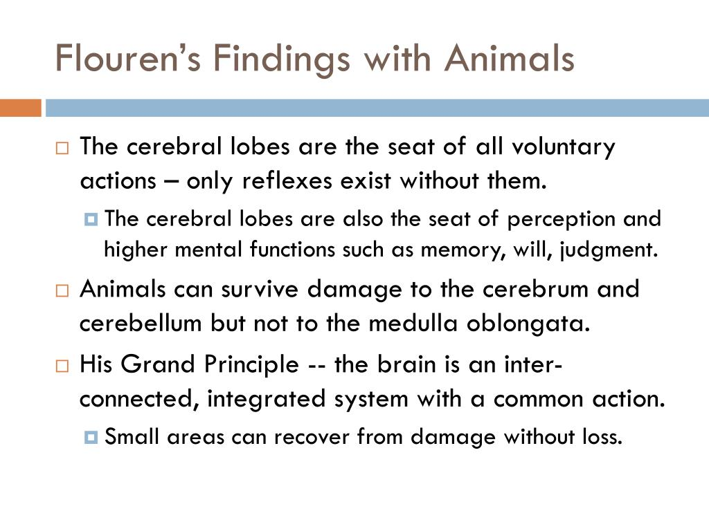 Flouren's Findings with Animals